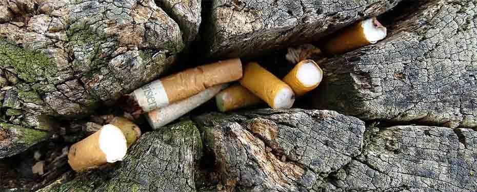 Cigarettacsikk